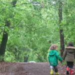По пътечка във гората