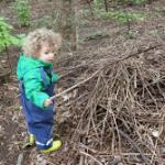 В нашата гора има тооолкова много пръчки